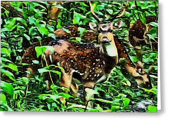 Deer's Green Day Greeting Card