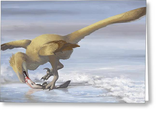 Deinonychus Antirrhopus Preys On A Fish Greeting Card by Emily Willoughby