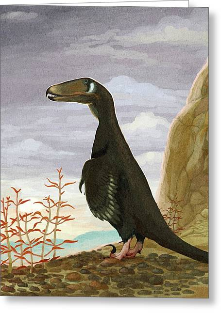 Deinonychus Dinosaur Greeting Card by Nemo Ramjet