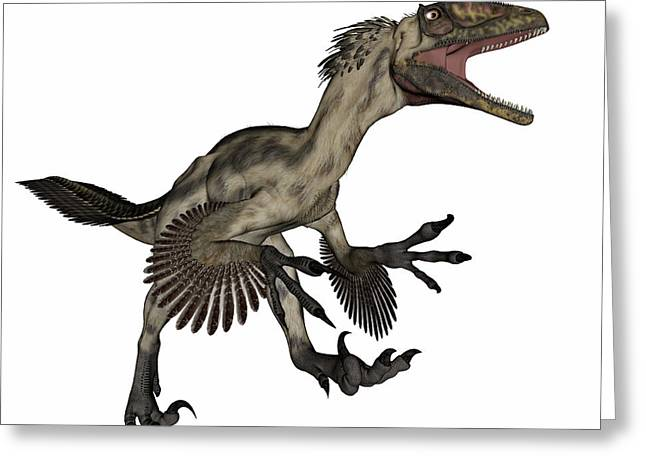 Deinonychus Dinosaur Roaring, Isolated Greeting Card by Elena Duvernay