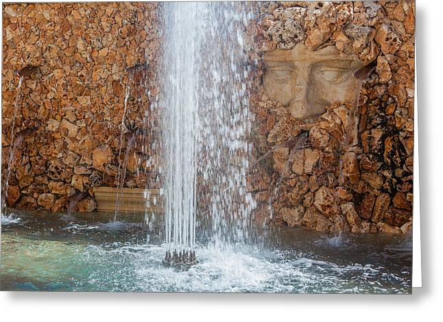 Dionysus Invites You Water Fountain Greeting Card by Scott Campbell