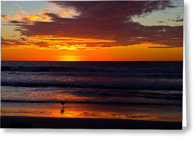 Greeting Card featuring the photograph Del Mar Sunset by Randy Bayne