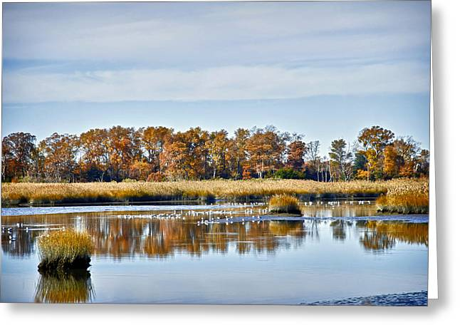 Delaware Bay Greeting Card