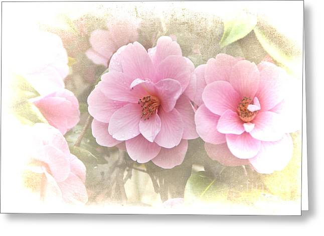 Delicate Camellias Greeting Card by Michelle Orai