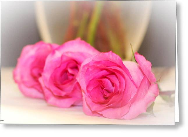 Delicate In Pink  Greeting Card