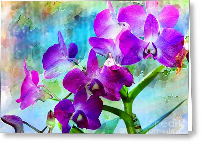 Delicate Orchids Greeting Card by Kathleen Struckle