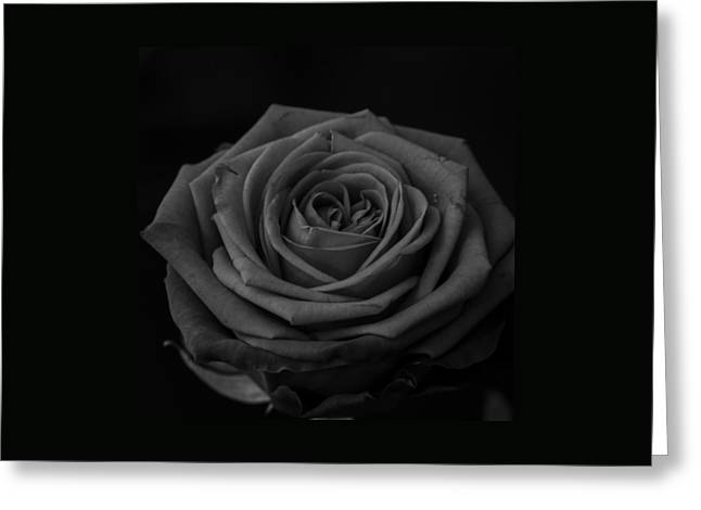 Love In Darkness Greeting Card by Miguel Winterpacht