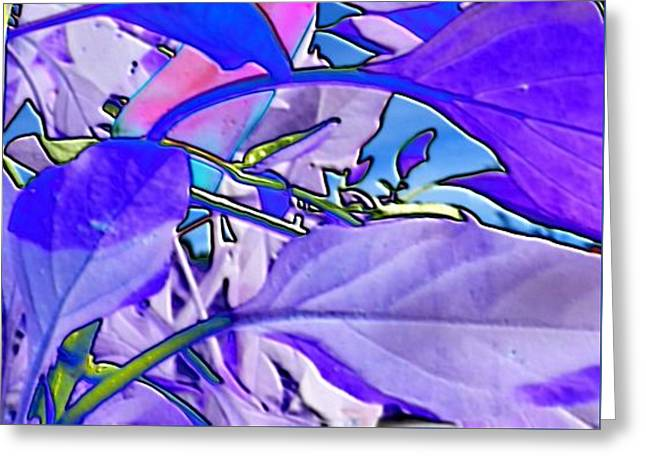 Greeting Card featuring the digital art Delight by Mike Breau