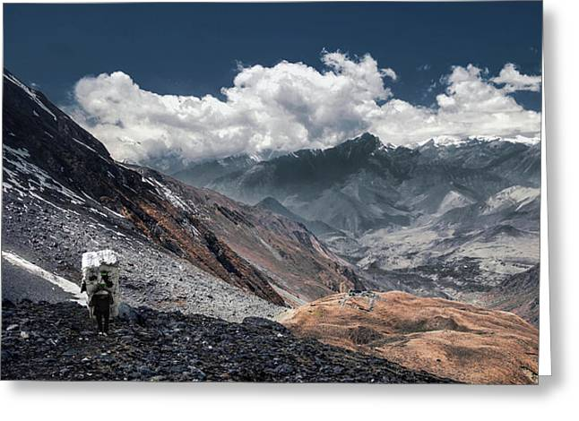Delivery Of Refrigerator, Himalayas Greeting Card