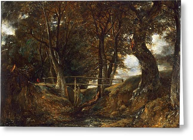 Dell At Helmingham Park Greeting Card by John Constable