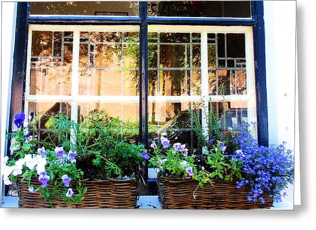 Delt Blue Windows Greeting Card
