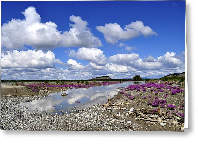 Greeting Card featuring the photograph Delta Junction Summer by Cathy Mahnke