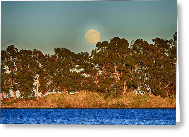 Delta Moonrise Greeting Card