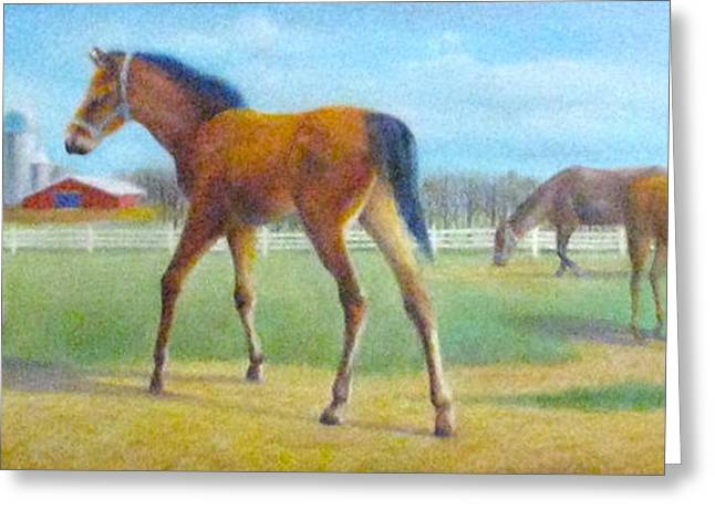 Greeting Card featuring the painting Delval Horse Farm In Spring by Oz Freedgood