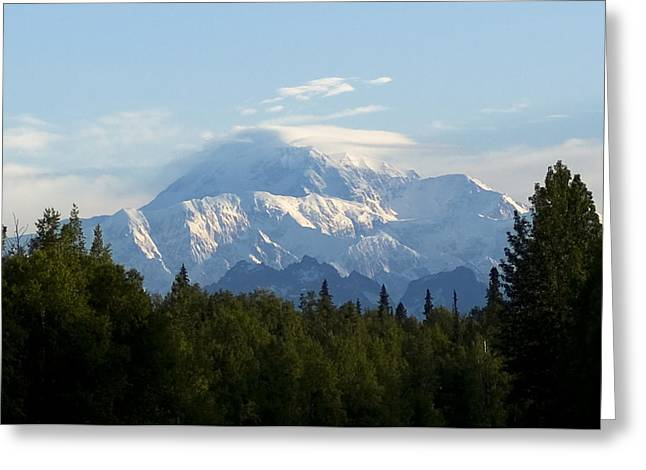 Denali A Closer Look Greeting Card
