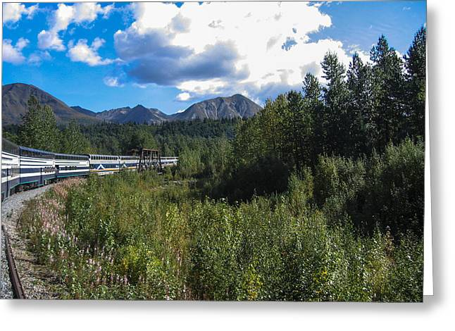 Denali Alaska Greeting Card