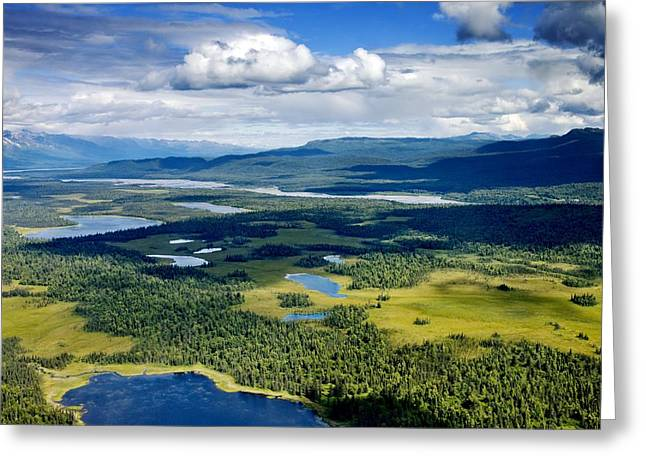 Denali Alpine Lakes And Forest Greeting Card