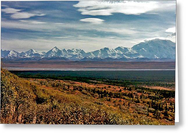 Greeting Card featuring the photograph Denali Colors by Jeremy Rhoades