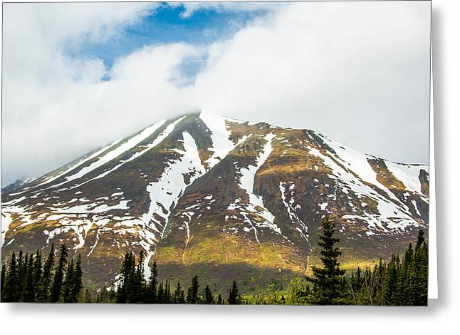 Denali Mountain Greeting Card