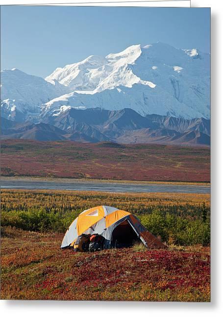 Denali National Park, Alaska, Mt Greeting Card