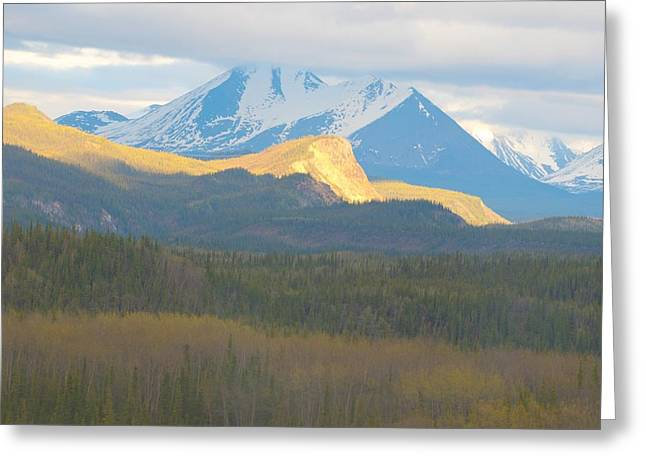 Denali Textures And  Colors Greeting Card