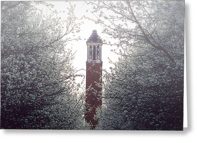 Denny Chimes Foggy Blossoms Greeting Card