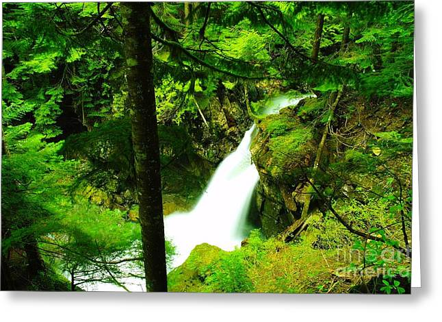 Denny Camp Falls  Greeting Card by Jeff Swan