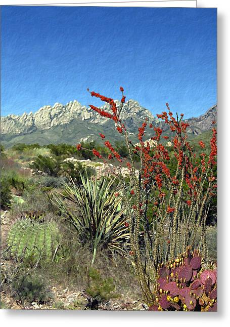 Desert Bloom Greeting Card by Kurt Van Wagner