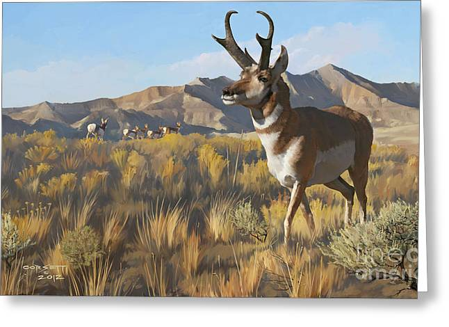 Desert Buck Greeting Card