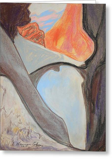 Desert Canyon Pool In The Negev Greeting Card by Esther Newman-Cohen