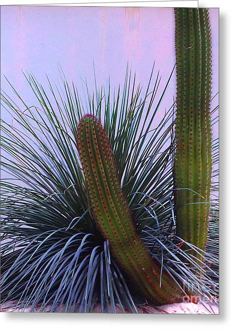 Desert Classic Greeting Card by Ann Johndro-Collins