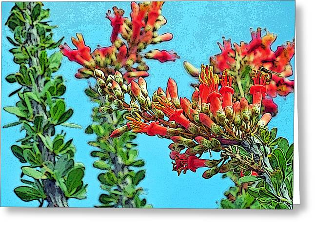 Desert Coral Greeting Card by Louis Nugent
