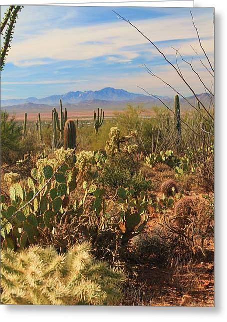 Greeting Card featuring the photograph Desert Day by Alicia Knust