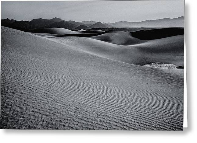 Desert Forms Greeting Card
