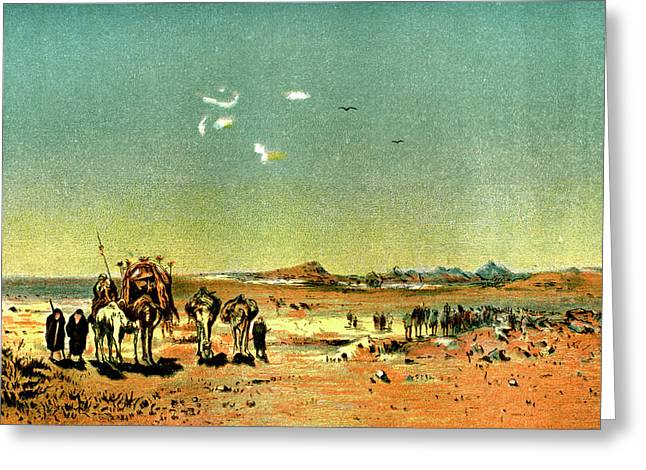 Desert Mirage Greeting Card by Collection Abecasis