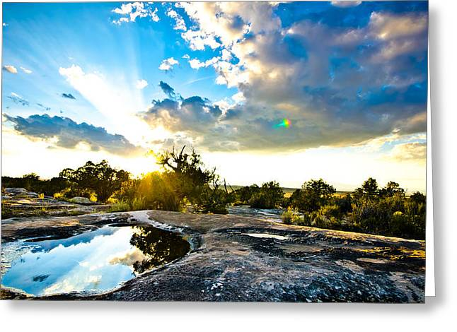 Desert Puddle Reflection Greeting Card by Chase Taylor