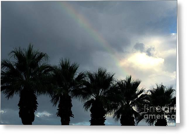 Desert Rainbow Greeting Card by Deborah Smolinske