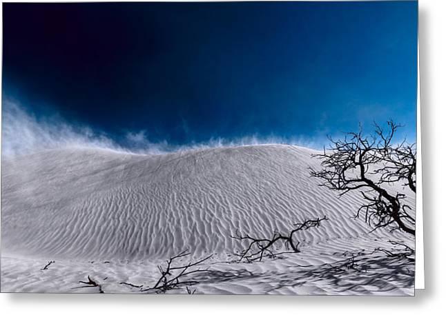 Desert Sandstorm Greeting Card by Julian Cook