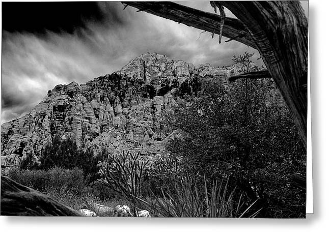 Greeting Card featuring the photograph Desert Slendor by Chris McKenna