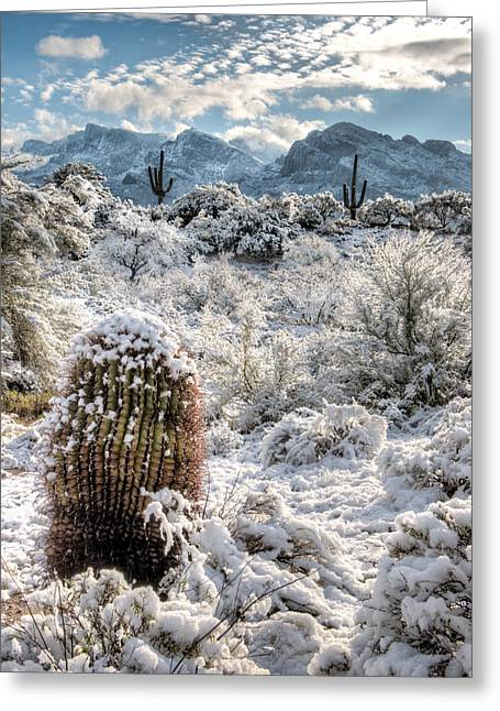 Desert Snow Greeting Card