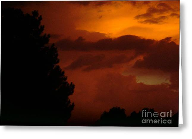 Greeting Card featuring the photograph Desert Storm by Carla Carson