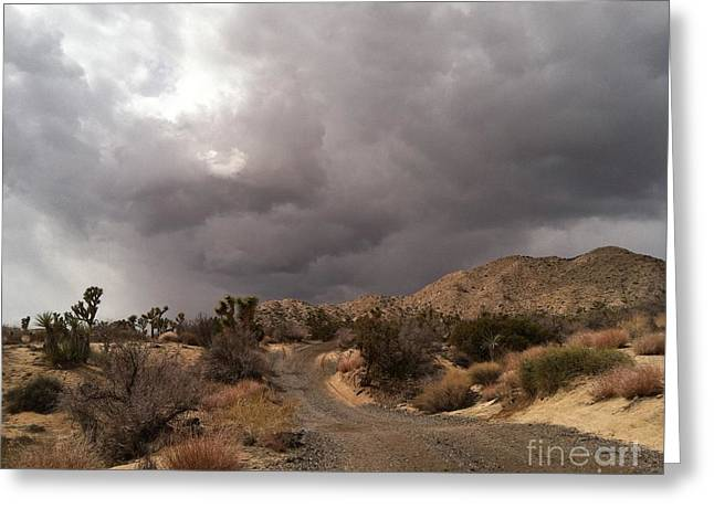 Desert Storm Come'n Greeting Card by Angela J Wright