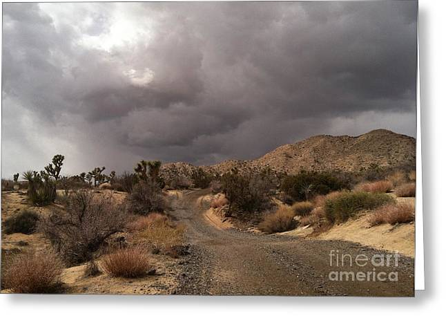 Desert Storm Come'n Greeting Card