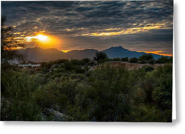 Greeting Card featuring the photograph Desert Sunset by Dan McManus
