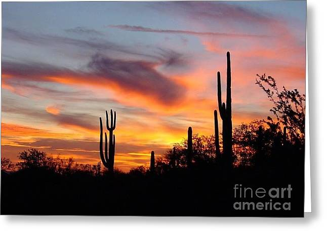 Desert Sunset Greeting Card by Joseph Baril