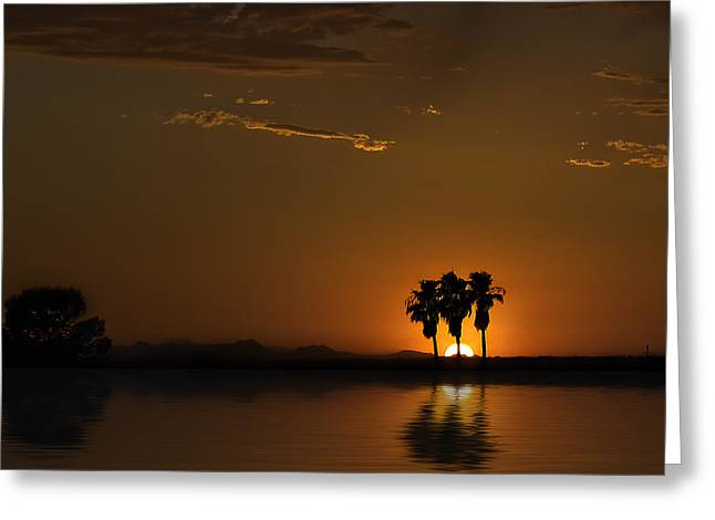 Greeting Card featuring the photograph Desert Sunset by Lynn Geoffroy