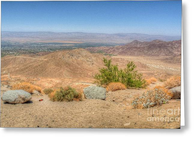 Desert View Greeting Card by Deborah Smolinske