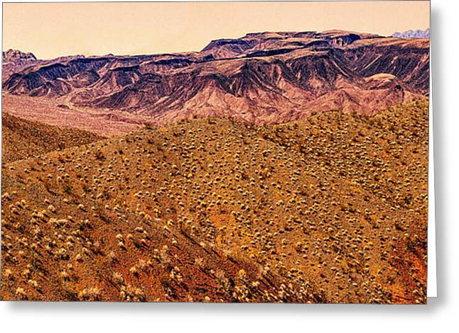Desert View In Arizona By The Colorado River Greeting Card by Bob and Nadine Johnston