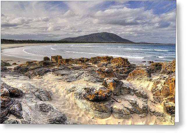 Deserted Shore Greeting Card by Terry Everson