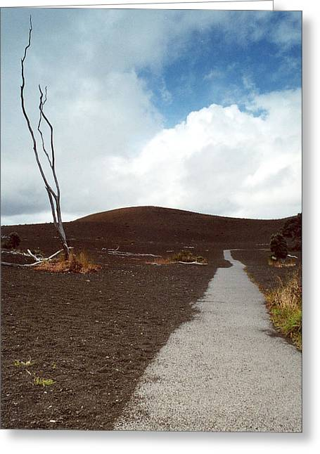 Greeting Card featuring the photograph Devastation Trail by Mary Bedy